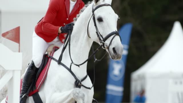 slo mo ds kvinnlig ryttare hoppa ett hinder på sin vita häst - häst tävling bildbanksvideor och videomaterial från bakom kulisserna