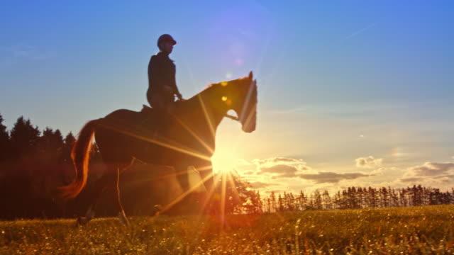 設定の太陽の馬の上のスローモーションの ds の女性のライダー - 動物に乗る点の映像素材/bロール