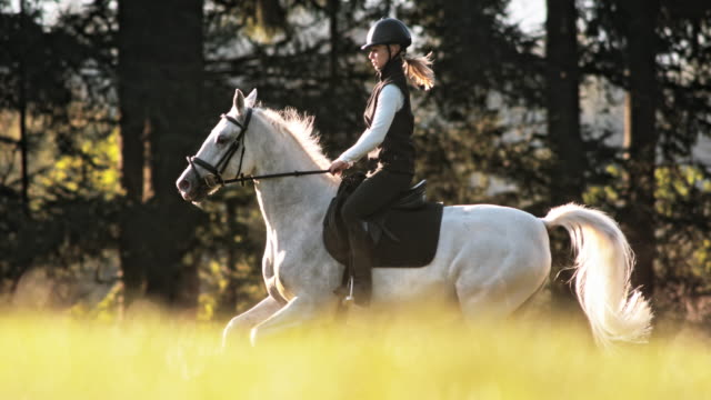 SLO MO TS Female riding white galloping horse across meadow