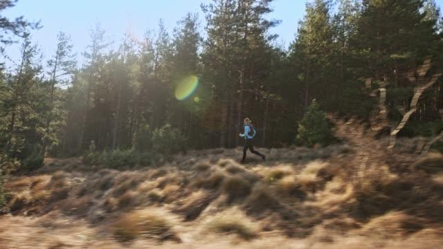 ts kvinna löpare kör på en stig längs en skog i solsken - kameraåkning på räls bildbanksvideor och videomaterial från bakom kulisserna