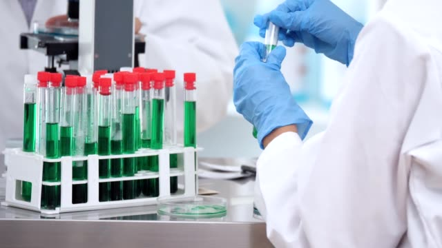 Female scientist uses pipette in lab
