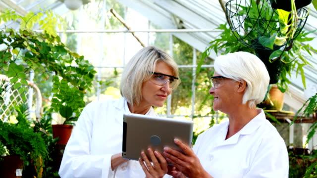 female scientists using digital tablet - 50 54 lata filmów i materiałów b-roll
