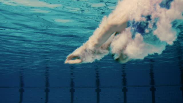 vídeos de stock e filmes b-roll de mulher saltar na piscina de natação - swim arms