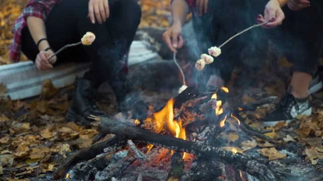 Female tourists roasting marshmallows over campfire in autumn forest video