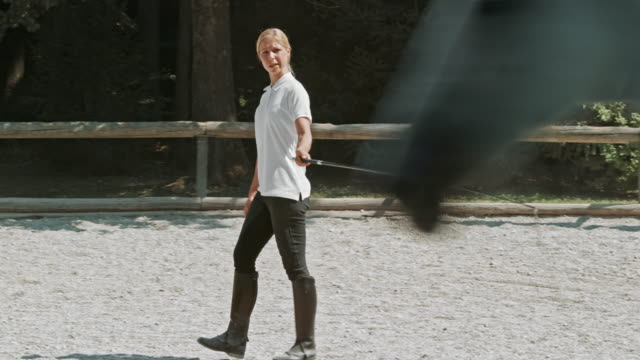 Formateur formation DS femme un cheval blanc en partie pen - Vidéo