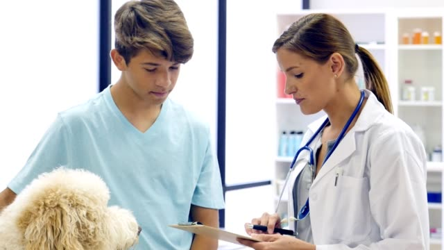 Female veterinarian discusses a dog's health with the young owner video
