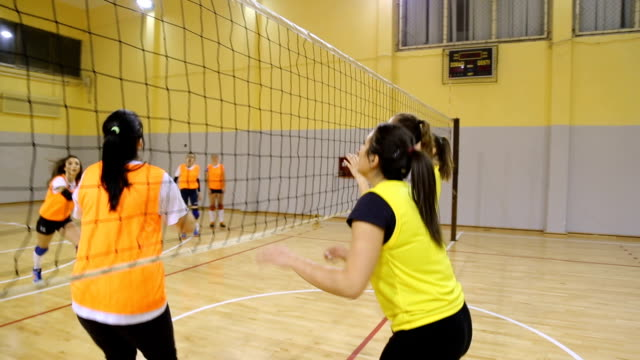 Female volleyball Video of Young women playing volleyball indoors,exercising volleyball ball stock videos & royalty-free footage