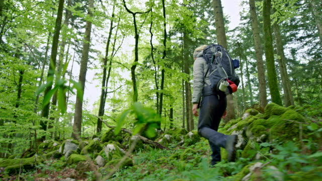 Female wilderness survival expert walking in a forest