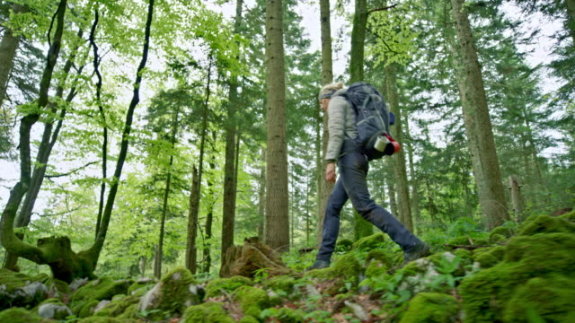 Female wilderness survival expert walking in a forest with a backpack