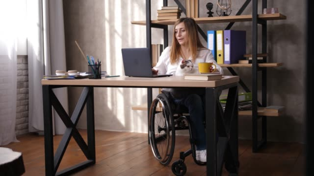vídeos de stock e filmes b-roll de female with impaired mobility working in office - capacidades diferentes