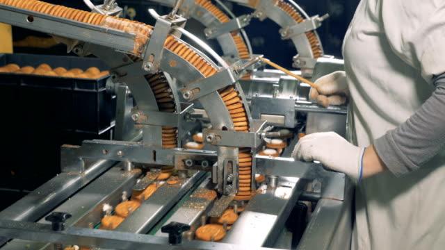 en kvinnlig arbetstagare innehar en pinne, samtidigt kontrollera cookies flytta på en linje. 4k. - livsmedelstillverkningsfabrik bildbanksvideor och videomaterial från bakom kulisserna