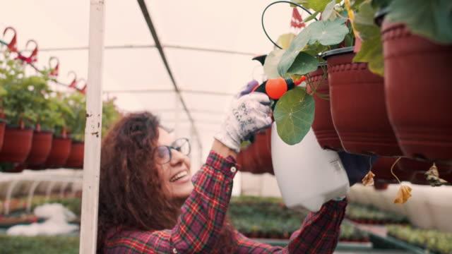 Female worker in greenhouse
