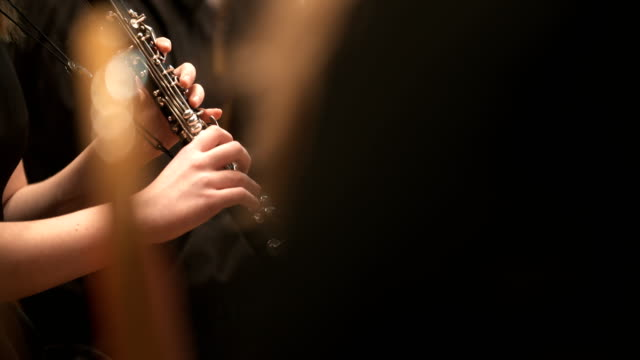 femalne musician playing clarinet during concert - orchestra video stock e b–roll