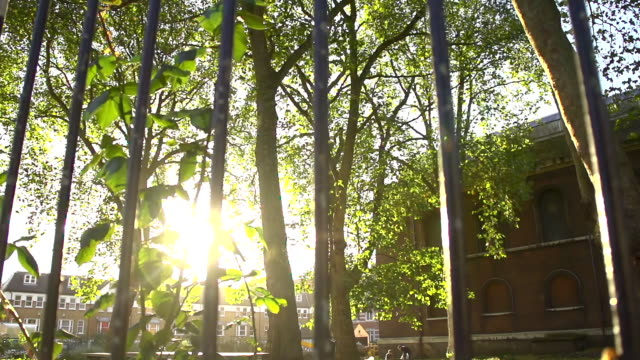 HD SUPER SLOW-MO: Fence And Sunlight HD1080p: SUPER SLOW MOTION shot of sunlight coming through a fence. Camera Stabilization shot. wrought iron stock videos & royalty-free footage