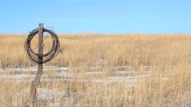 fence post with barbed wire  prairie stock videos & royalty-free footage