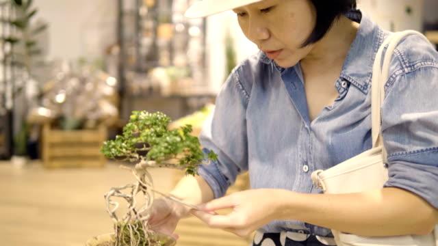Feng Shui :Asian Women Buying Bonsai Tree