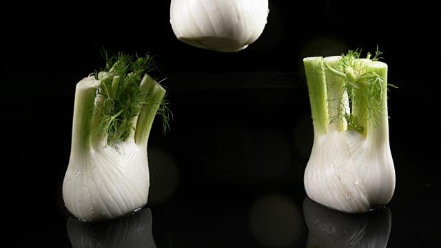 stockvideo's en b-roll-footage met venkel, foeniculum vulgare, plantaardige vallen in water tegen zwarte achtergrond, slowmotion 4k - venkel