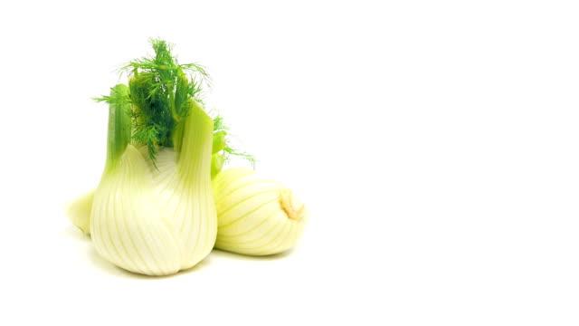 stockvideo's en b-roll-footage met fennel on white - venkel