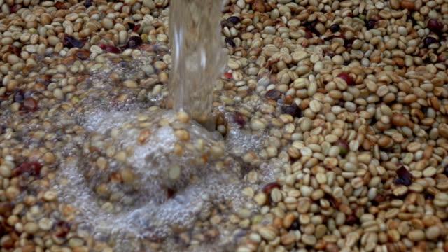 Ferment coffee slow motion video