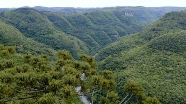 Ferradura Valley in Canela, RS, Brazil video
