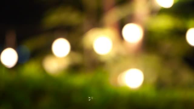 Festival de iluminação decorativa noite de festa no jardim - vídeo