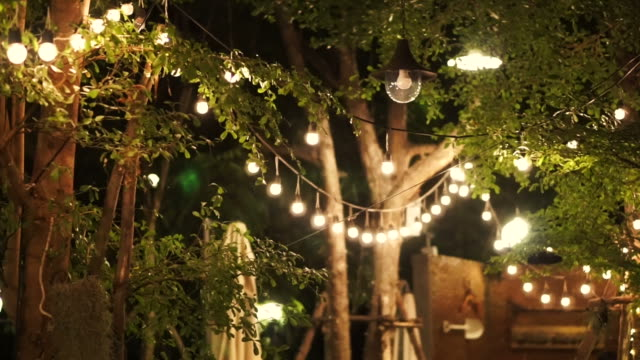 festival decorative light night party in the garden video