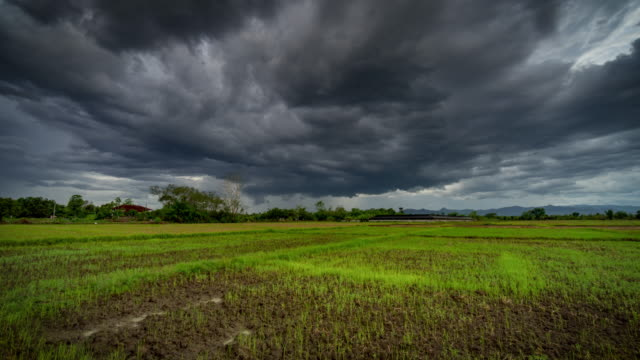 Field and storm clouds 4K time lapse
