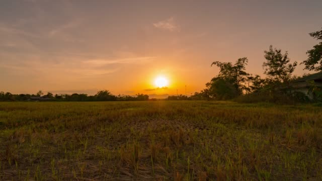 field and sunrise time lapse - восход солнца стоковые видео и кадры b-roll
