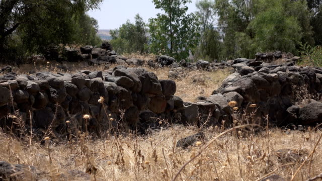 Field Overgrowing Rocks that Used to Be Part of City Wall video