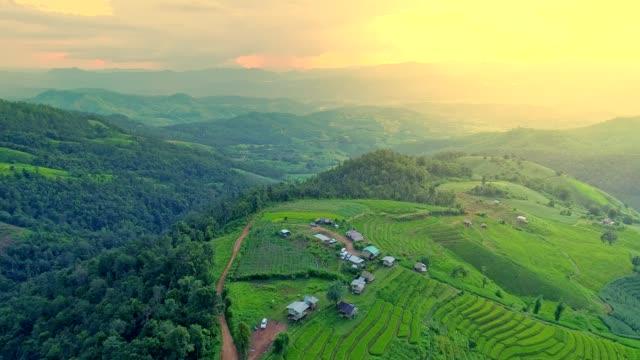 field terrace - taras ryżowy filmów i materiałów b-roll