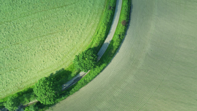 Fields Divided by Country Road and Hedgerows - Top Down Drone Shot