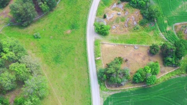 fält landskap, flygvy ovanifrån, enkelväg - swedish nature bildbanksvideor och videomaterial från bakom kulisserna