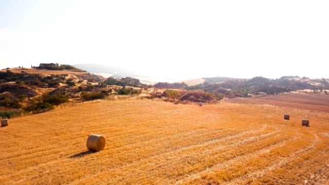 Fields of Val d'Orcia video