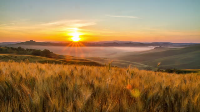 T/L Fields of wheat in the sunrise Time lapse shot of a morning mist across the fields of wheat in the Tuscany countryside at sunrise. Tuscany. Florence. Italy. The footage was shot in raw. Also available in 5K resolution. horizon over land stock videos & royalty-free footage