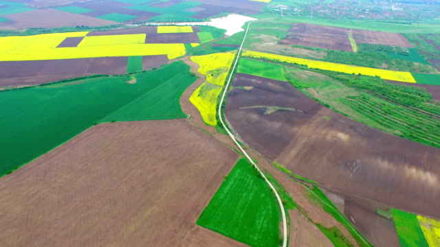Fields with different agricultural crop types, aerial video