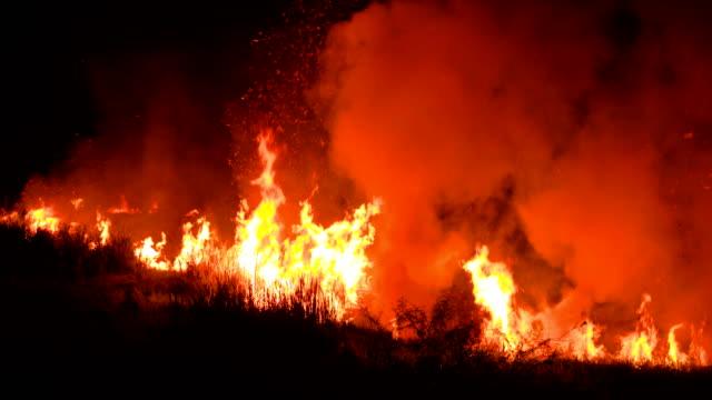 stockvideo's en b-roll-footage met felle bosbranden in gevaar brengen 's nachts - bosbrand
