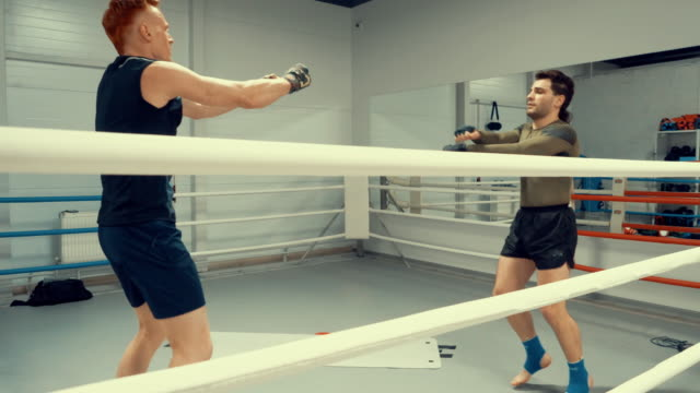 fighters are warming before training on ringside in gym. professional sport concept. - sparring allenamento video stock e b–roll