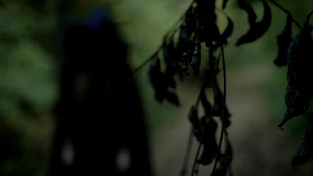 figure of wicked witch is wearing in black long gown with hood, standing in scary dark forest video