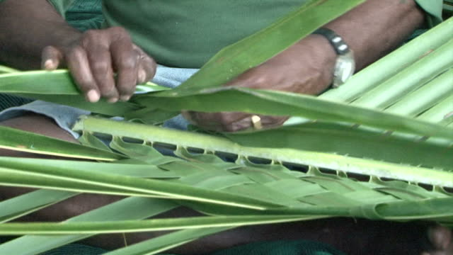 Fiji - man weaving banana leaves video