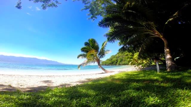 Fijian beach video