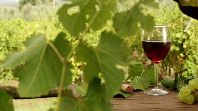 Filling Glass with Wine in Vineyard. v4. Close-Up. video