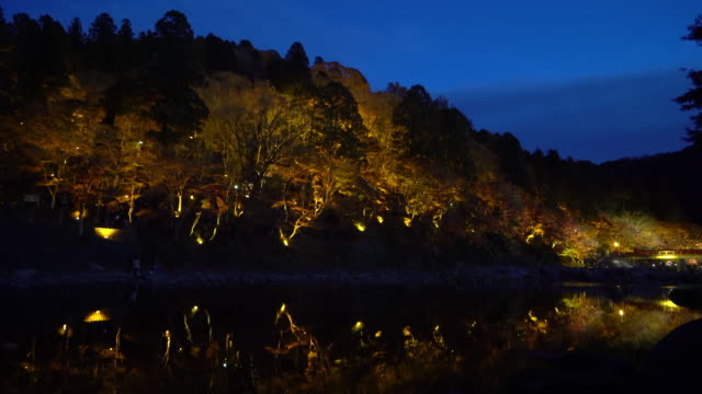 照明名古屋で映画チルトこうらんけい森林公園の夜 - トヨタ点の映像素材/bロール