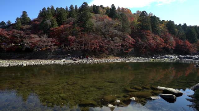 秋の赤のまま名古屋で映画チルト: こうらんけい森林公園 - トヨタ点の映像素材/bロール