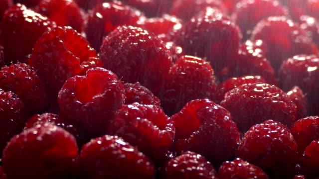 fine spray keeps raspberries fresh - bacca video stock e b–roll