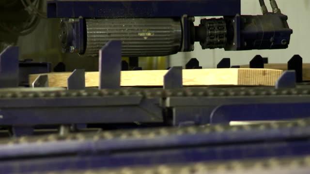 dito jointing linea in segheria - giuntura umana video stock e b–roll