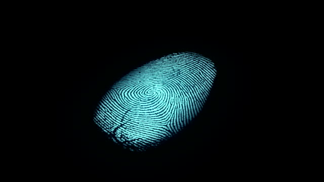 Fingerprint Identification video