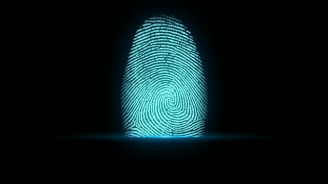 4K Fingerprint Identification video