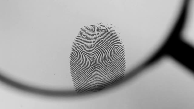 Fingerprint Magnifying Fingerprint Magnifying HD1080p detective stock videos & royalty-free footage