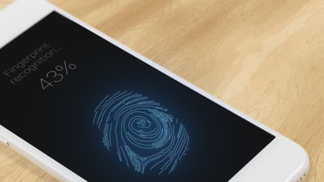 Fingerprint recognition in a mobile phone video