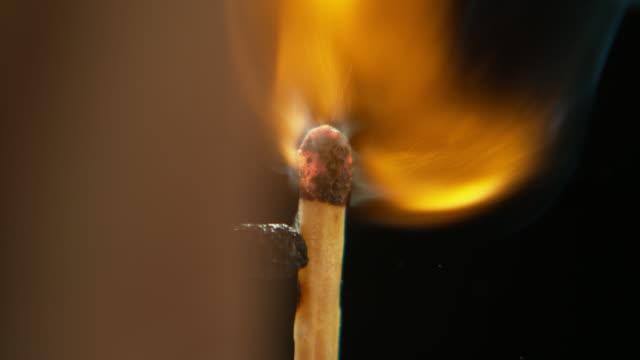 fire feeds fire - incendio doloso video stock e b–roll